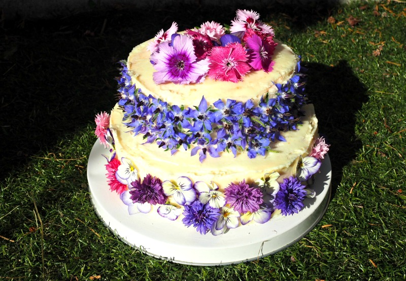 Bake off Botanical Edible Flowers