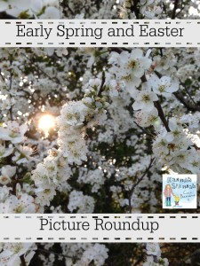 easter roundup pic