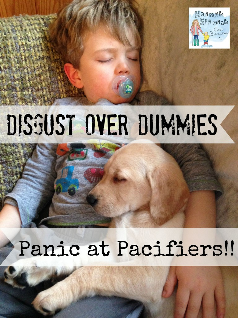 disgust over dummies panic at pacifiers dummies and pacifiers