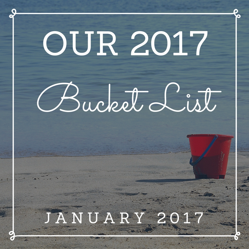 My personal, family and social media Bucket List for 2017. Here's my Bucket List Update from January - February