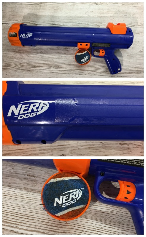 nerf dog tennis ball thrower rspca christmas