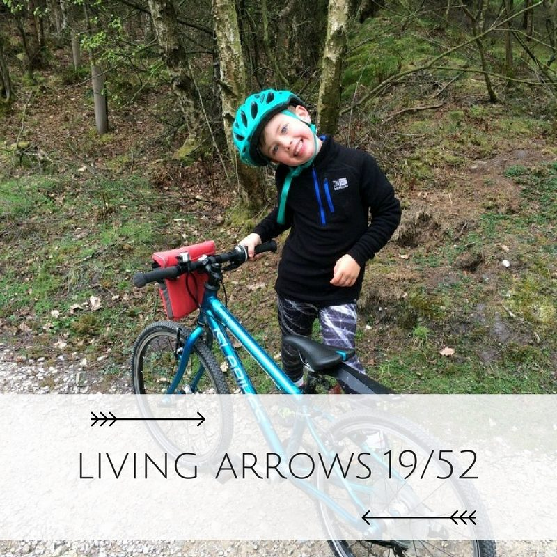 "The Living Arrows project took it's name from a poem by Kahlil Gibran, ""You are the bows from which your children as living arrows are sent forth"". Every week, I shall be posting a photo taken the week before and I can't wait to see the collection at the end of the year."